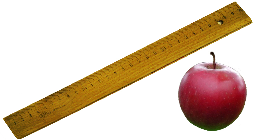 Kinky Discipline Ruler & Erotic Apple